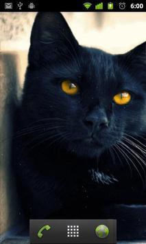 black cat live wallpaper apk screenshot