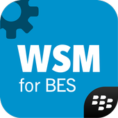 Install App android Work Space Manager for BES12 APK new