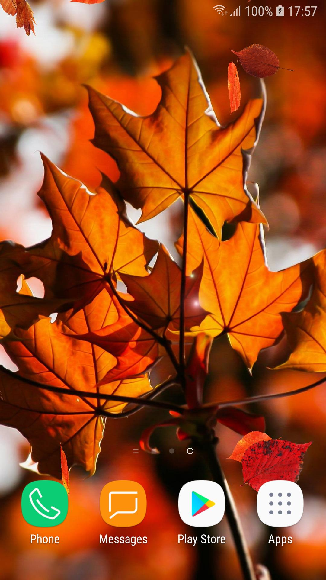 Beautiful Autumn Live Wallpaper Hd For Android Apk Download