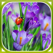 Macro Spring Live Wallpaper icon