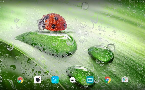 Macro Spring Live Wallpaper apk screenshot