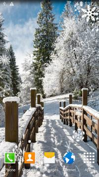 Winter Landscapes Wallpaper 海报