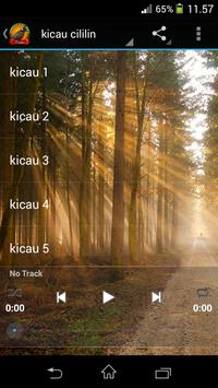 Kicau Cililin apk screenshot