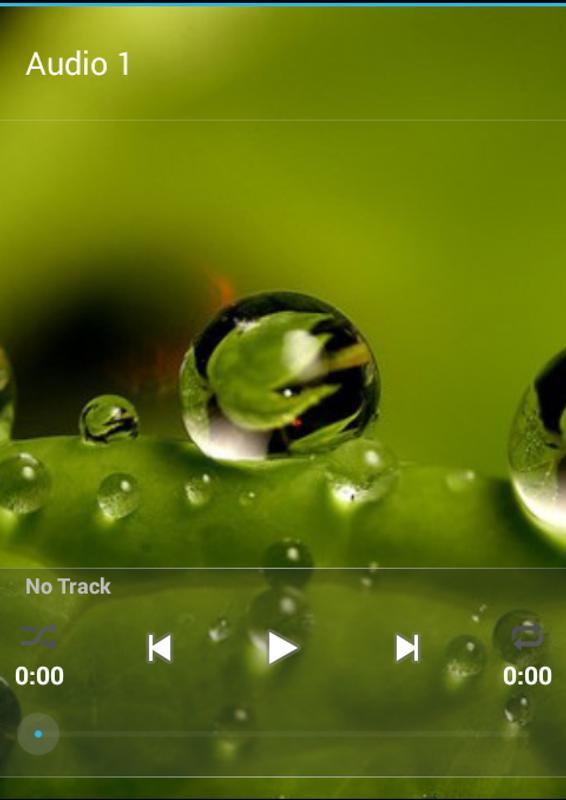 Surah al fajr mp3 free download