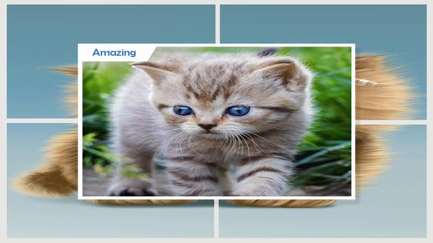 Cute Cat Live Wallpaper apk screenshot