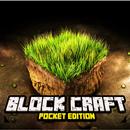 BlockCraft Pocket Edition FREE MOD APK