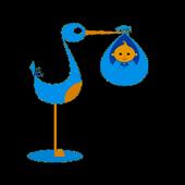 GestData - Idade Gestacional icon