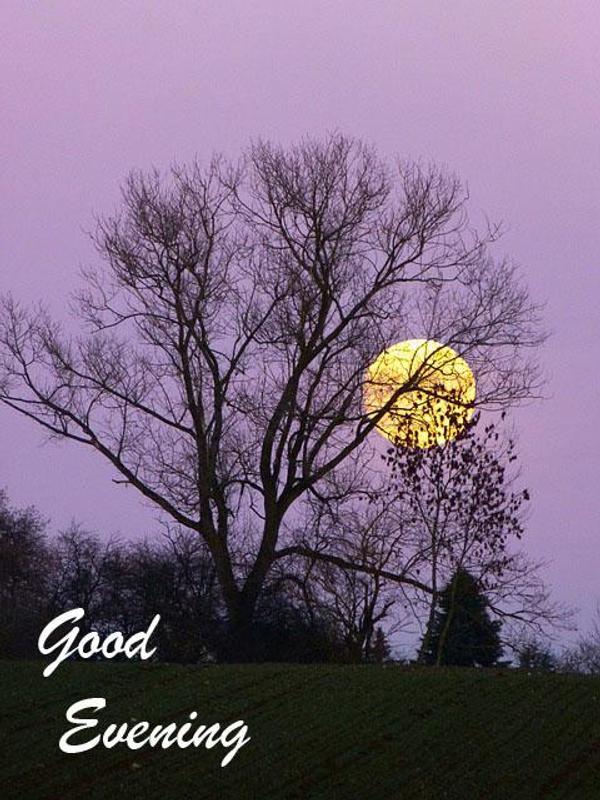 Good evening wallpaper Source · Gud Evening Hd Wallpaper Download Many HD  Wallpaper