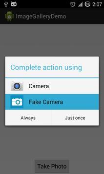 Fake Camera poster