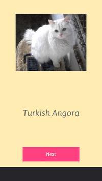 Cats Word Search screenshot 4
