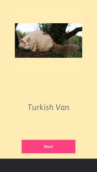 Cats Word Search apk screenshot