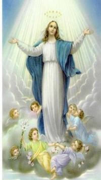 Virgin Mary Wallpaper Apk Screenshot