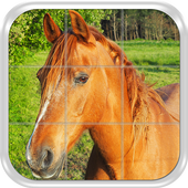 Puzzle Game - Horses, mares and foals icon