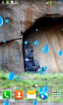 Monkey Live Wallpapers apk screenshot