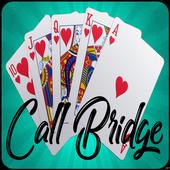 Call Bridge Pro icon