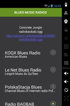 BLUES MUSIC RADIOS screenshot 1