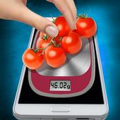 Scales in Phone Simulator icon