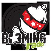 Booming Radio icon