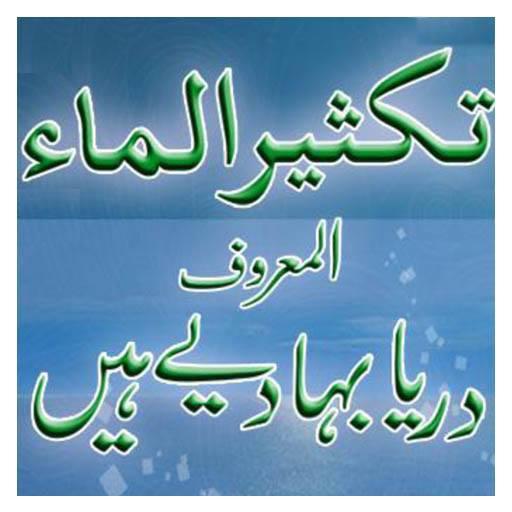 Book 029 Faiz Ahmed Uwaysi poster