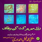 Book 022 Faiz Ahmed Uwaysi icon