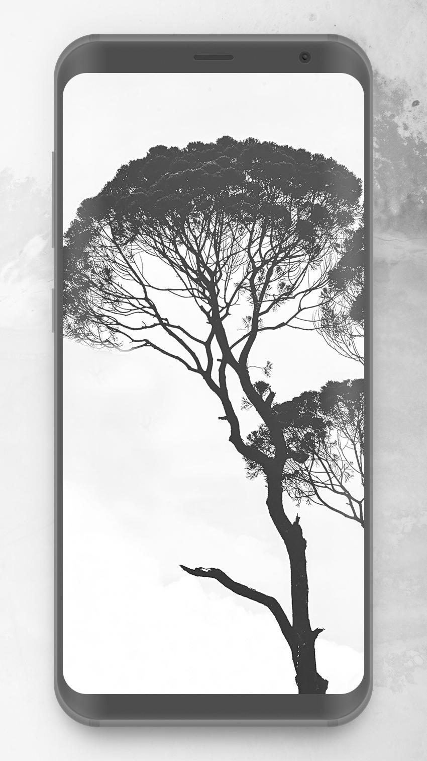 Black White 4k Wallpapers For Android Apk Download