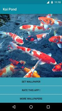 Koi Fish Pond Video LWP poster