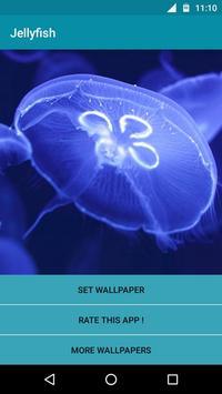 Jellyfish Video Live Wallpaper poster