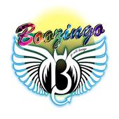 Boozingo icon
