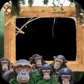 Jungles Photo Frames icon