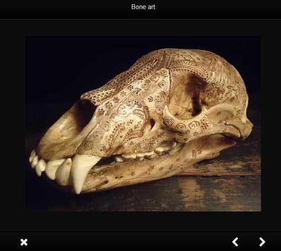 Bone craft poster