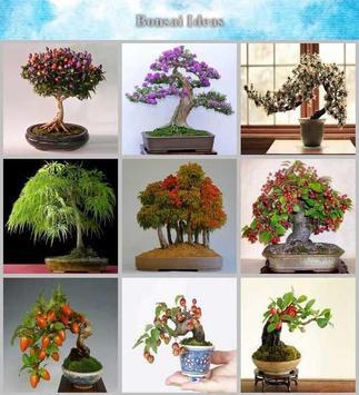 bonsai idea poster