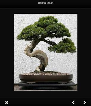 bonsai idea screenshot 2