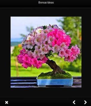 bonsai idea screenshot 3