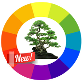 Design Tree Bonsai icon