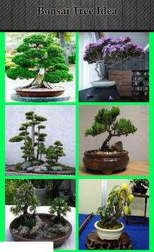 Bonsai Tree Idea poster