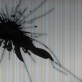 Wallpaper Cracked Screen icon