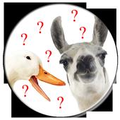 Llama vs Duck icon