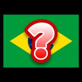 Flag Nation Game icon