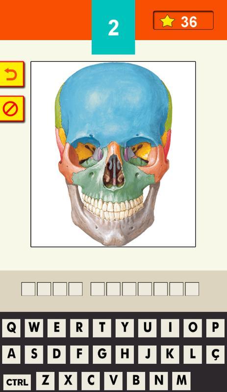 Quiz Anatomia Humana - Lite (Unreleased) Descarga APK - Gratis ...