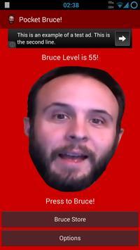 Pocket Bruce! poster