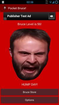 Pocket Bruce! apk screenshot