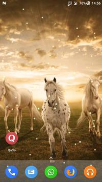 Magic Touch - Racing Horses poster