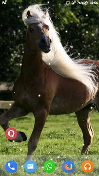 Magic Touch - Racing Horses apk screenshot