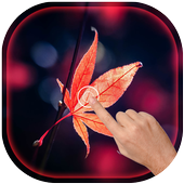 Magic Touch - Maple Leaves Live Wallpaper icon
