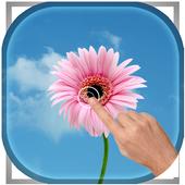 Magic Ripple - Peach Flowers icon