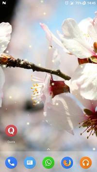 Magic Ripple - Peach Flowers poster