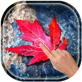 Magic Touch - Red Leaves icon