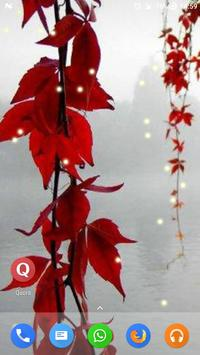 Magic Touch - Red Leaves poster