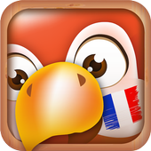 Learn French Phrases | French Translator icon