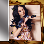 Beautiful Butterfly Frames icon